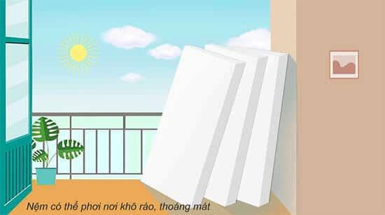 Không phơi đệm trực tiếp dưới ánh nắng mặt trời mà phơi ở những nơi khô ráo, thoáng mát.