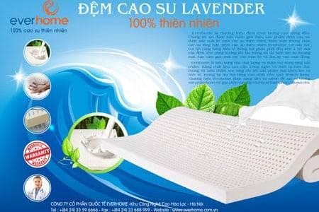 Đệm cao su Everhome Lavender