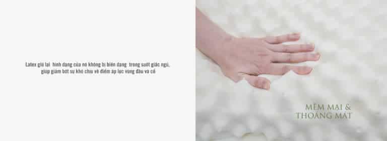 Gối cao su vạn thành Massage G