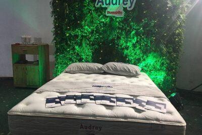 Đệm lò xo Dunlopillo Audrey